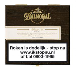 o XO Gordito Cigaronline.nl